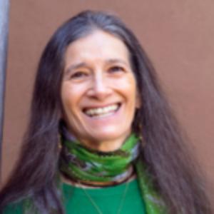 Sandra  Ingerman | Award Wining Author & Teacher of Shamanism