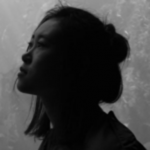 Ximan Li   Filmmaker